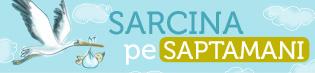 banner_sarcina_sapt