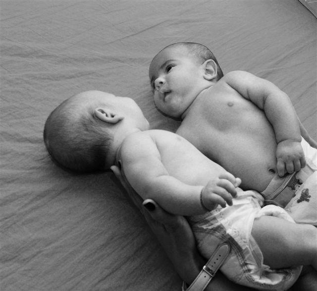 Bebeluşii Dianei Gămulescu