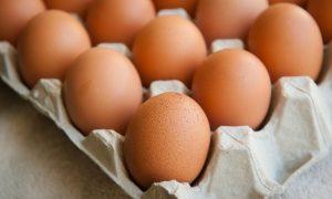 oua-diversificare-totul-despre-mame