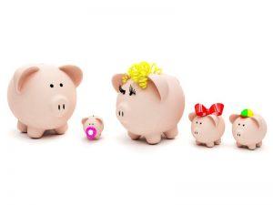 bugetul-lunii-decembrie-totul-despre-mame