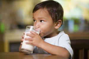 laptele de vacă