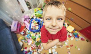 organizarea jucăriilor