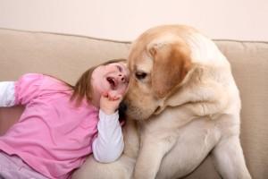 terapia cu animale