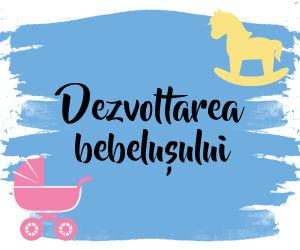 Dezvoltarea Bebelusului