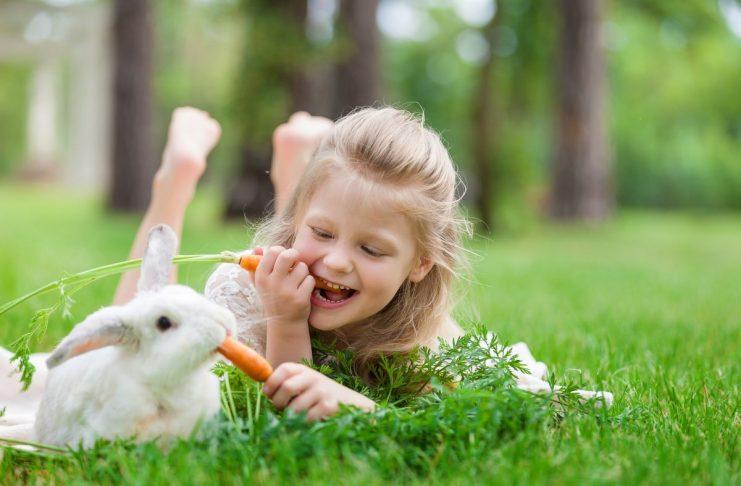 ghicitori despre iepuri