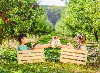 cum putem crește imunitatea copiilor